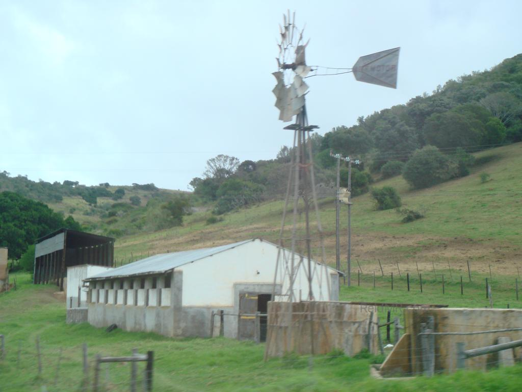 A roadside farm on the way home, with a windmill in the foreground, a building and greenery behind.