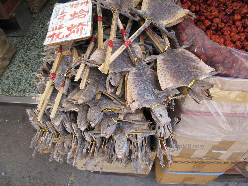 Bucket of dried lizards on a stick.