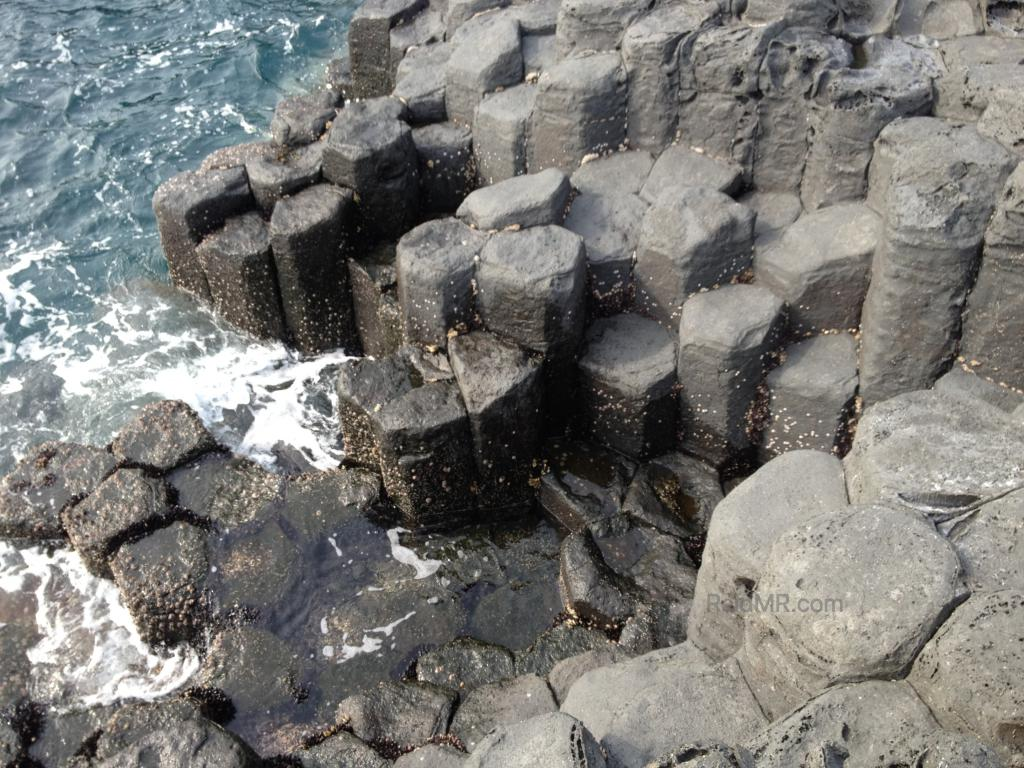 Honeycomb like rock structures jutting out of the ocean